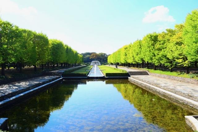 国営昭和記念公園の混雑状況や夏休み、プール、紅葉と駐車場の混み具合