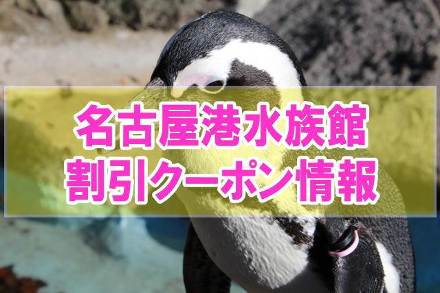 名古屋港水族館の割引クーポン情報2020!jafや年パス、前売り券等お得チケット