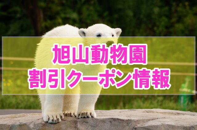 旭山動物園の割引クーポン情報2020!ベネフィットや前売り券、年パスなどお得チケット
