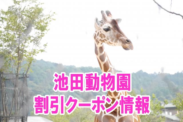 池田動物園の割引クーポン情報2019!jafやコンビニ前売り券など格安チケット