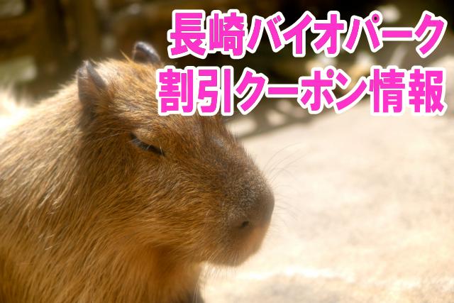 長崎バイオパークの割引クーポン情報2020!jafや前売り券、ベネフィットなど優待チケット