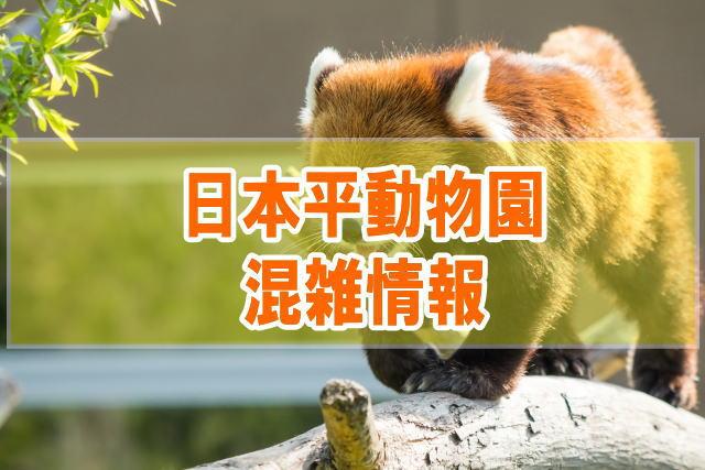 日本平動物園の混雑(GW平日土日)や夜の動物園、駐車場の混み具合と口コミ評判