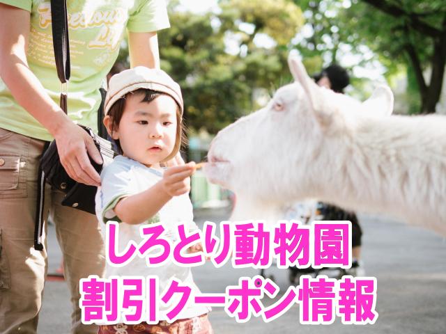 しろとり動物園の割引クーポン情報2019!jafや前売り券、年パスなど格安チケット