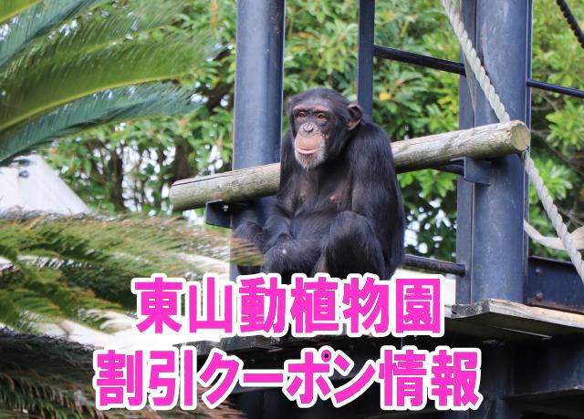 東山動植物園の割引クーポン情報2019!無料入園方法や年間パスポート、前売り券など