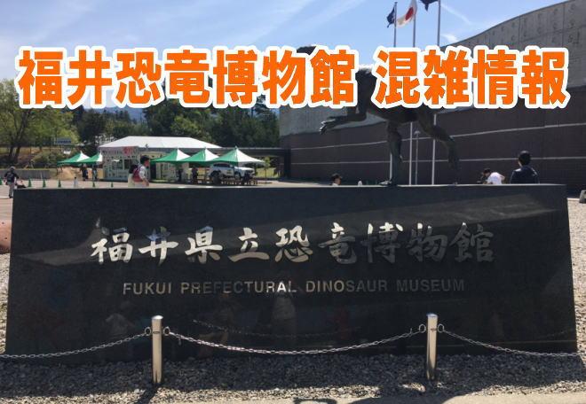 福井恐竜博物館のお盆&夏休みの混雑や渋滞、駐車場の混み具合と口コミ評判