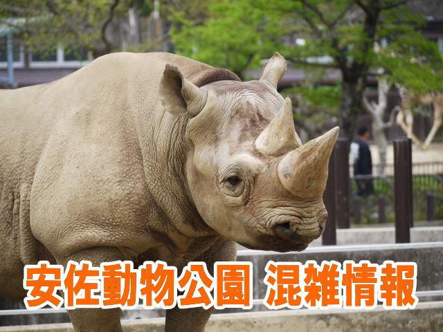 安佐動物公園の混雑や渋滞、ナイトサファリ、駐車場の混み具合と口コミ評判