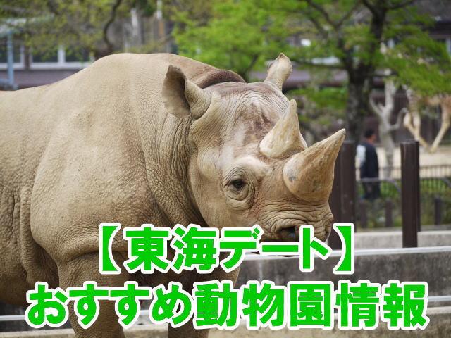 東海の動物園デートにおすすめ人気スポットのポイント、混雑、割引情報まとめ