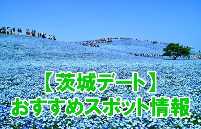 茨城デートでおすすめテーマパーク、動物園、水族館、観光地スポット情報