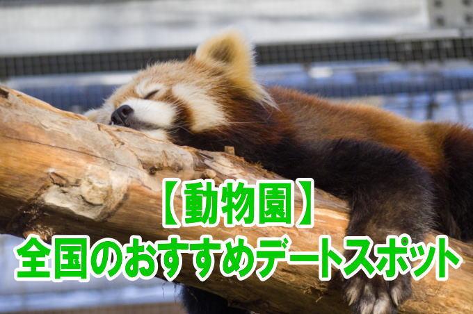 全国の動物園デートにおすすめ人気スポットのポイント、混雑、割引情報まとめ