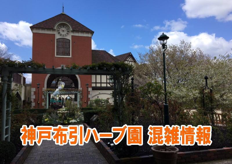 神戸布引ハーブ園の混雑や紅葉、ロープウェイ、駐車場の混み具合と口コミ評判