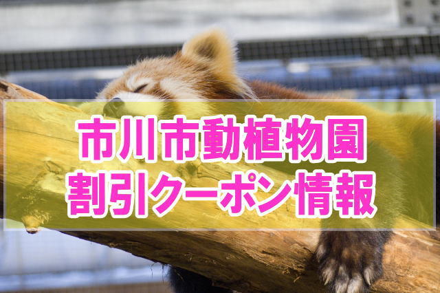 市川市動植物園の割引クーポン情報2019!jafや前売り券、年パスなどお得チケット