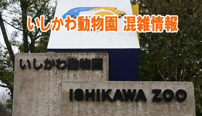 石川動物園の混雑(平日土日)やナイトズー、駐車場の混み具合と口コミ評判