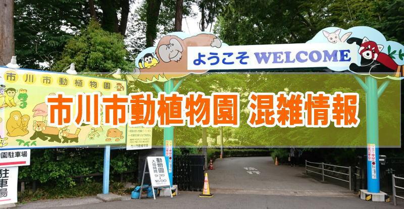 市川市動植物園の混雑状況(平日土日)や駐車場の混み具合と口コミ評判